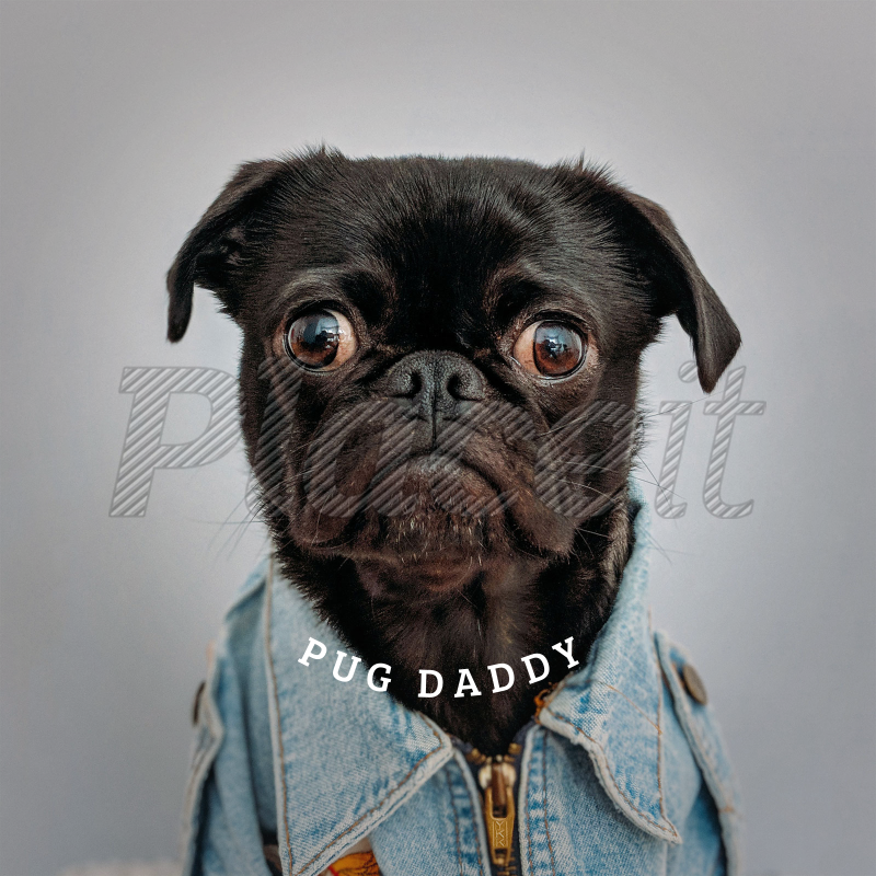Pug Template | Placeit Popsocket Template With Pug